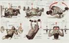 Основные упражнения в картинках