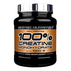 100% Creatine Monohydrate (1000 gr) - фото 6145