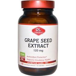Grape Seed Extract (100 caps) - фото 6174