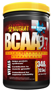 BCAA (348 gr)