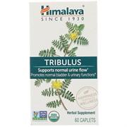 Tribulus (60 capl)