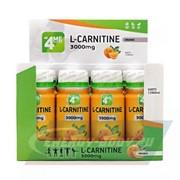 L-Carnitine 3000 mg (12*60 ml)